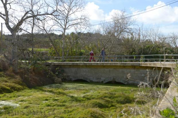 A couple walk over the bridge at Chadwick Lakes in Rabat on January 3. Photo: Matthew Mirabelli