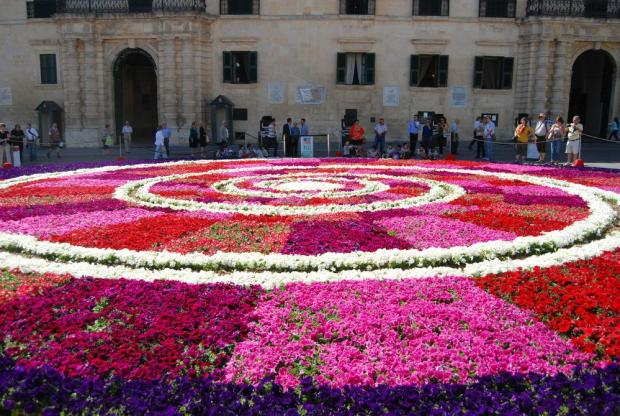 Over 80,000 seasonal potted plants were used to create an infiorata in a spiral design as part of the Valletta Green Festival on St George's Square in Valletta on May 29. Photo: Mark Zammit Cordina