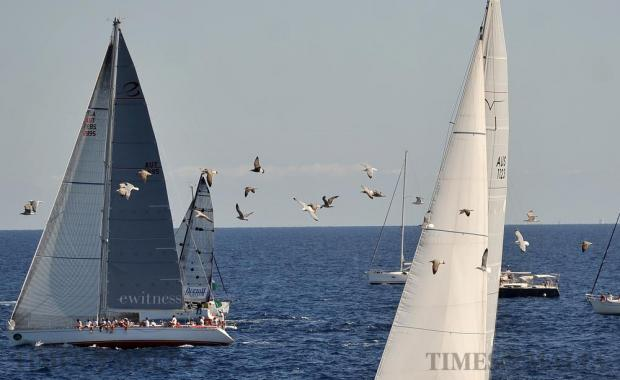 Sea gulls fly with sailboats just outside the Grand Harbour breakwater shortly after the start of the Rolex Middle Sea Race on October 22. Photo: Chris Sant Fournier