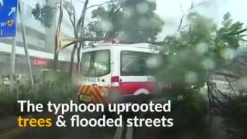 Watch: Typhoon batters Hong Kong and south China