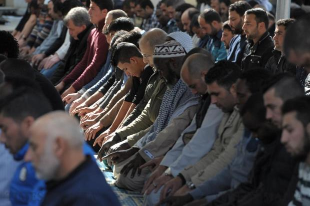 The faithful pray for rain in their adopted country at the Paola mosque on February 26. Photo: Matthew Mirabelli