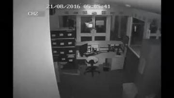 Watch: Men break into Australian school, leave three crocodiles behind