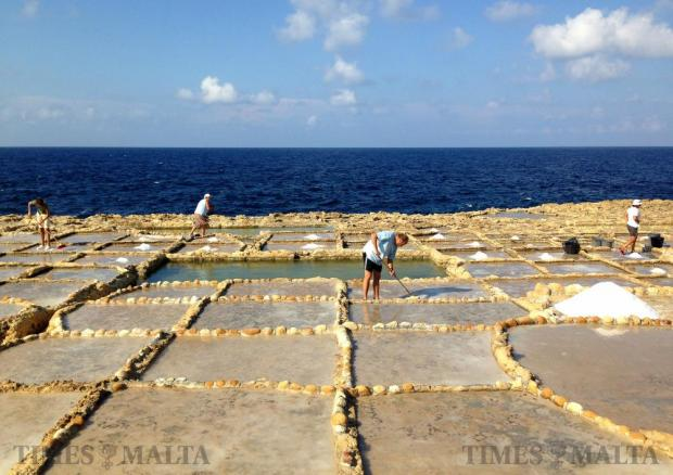 Salt collection is in full swing at the Qbajjar salt pans in Gozo on September 10. Photo: Chris Sant Fournier