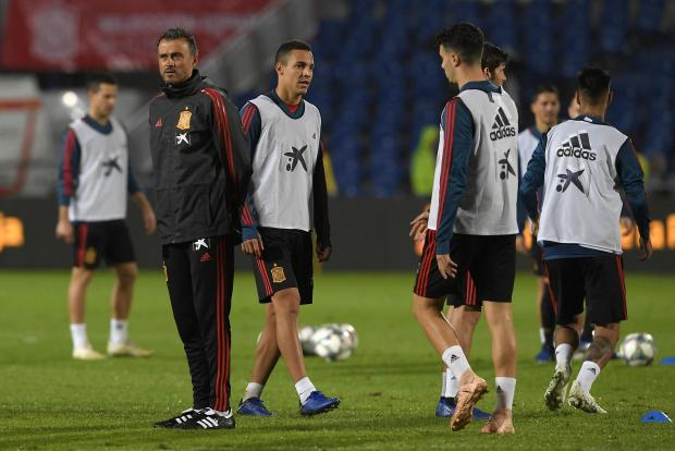 Luis Enrique (left) will be guiding Spain against Norway and Malta.