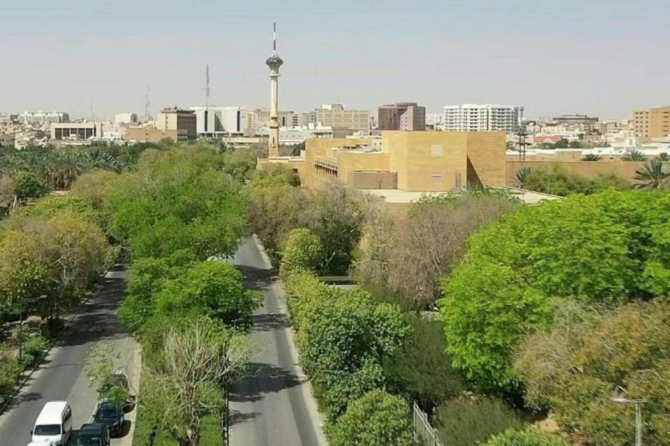 Riad tiene previsto plantar 7,5 millones de árboles.  Foto: AFP