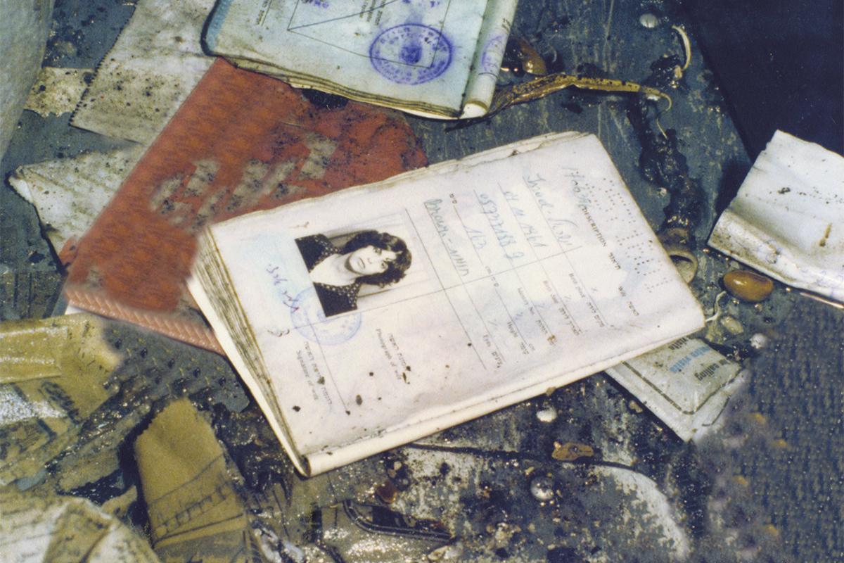 Documents left inside the plane.