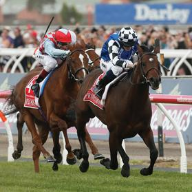 Ryan Moore rides Protectionist to win the Melbourne Cup.