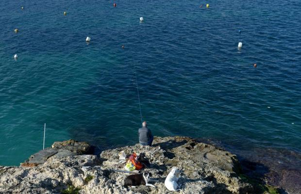 Accompanied by his two dogs, a man fishes in St Paul's Bay on December 22. Photo: Matthew Mirabelli