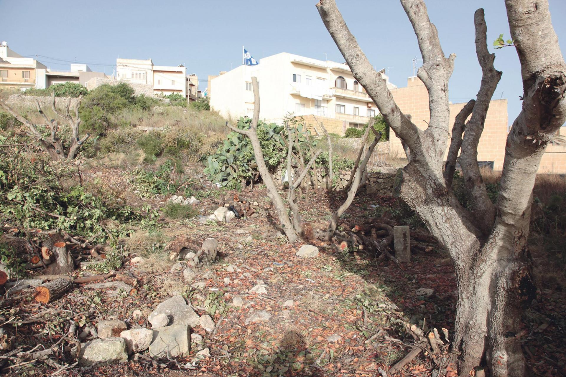 Clearance work and site preparation for a block of flats started on the Qala site last week. Photo: Victor Paul Borg