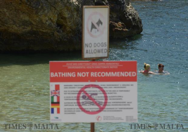 Swimmers ignore signs informing them that bathing is not recommended at Ta-Xema Bay in St Paul's Bay on August 5. Photo: Matthew Mirabelli