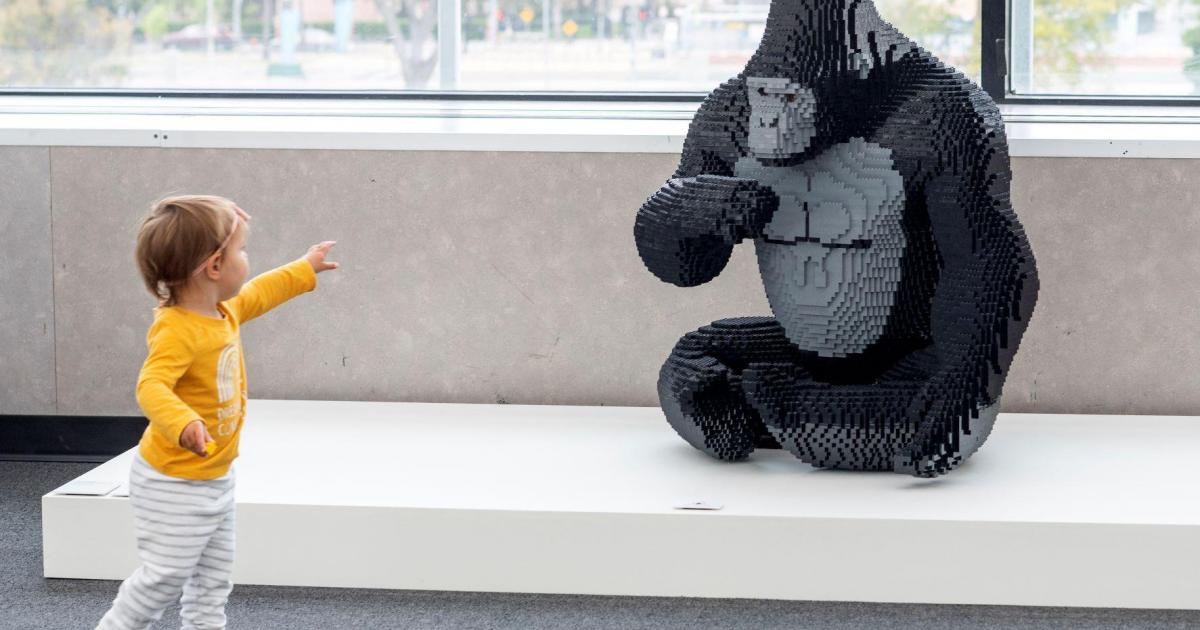 Lego posts record profit, turnover as stores reopen