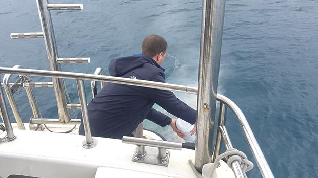 Peter Hale, Capt. Everett's nephew, scattering his uncle's ashes between Malta and Gozo last month.