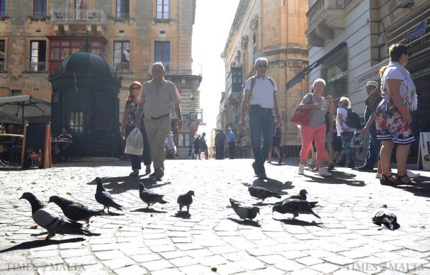Pigeons and humans mingle in St John Street Valletta on October 14. Photo: Chris Sant Fournier