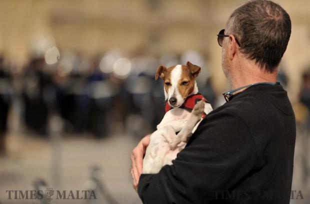 A man carries his dog in Castille Square, Valletta on December 10. Photo: Chris Sant Fournier