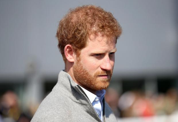Prince Harry, the younger son of Charles, Prince of Wales, and Diana, Princess of Wales.