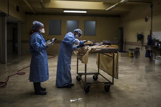 Searching for lost lives: South Africa's unidentified corpses