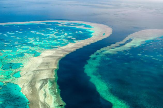 Outlook for Great Barrier Reef downgraded to 'very poor'