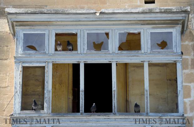 Pigeons nest in a Traditional Maltese balcony in Marsa on June 20. Photo: Matthew Mirabelli