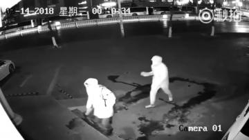 Watch: Bungling crook knocks out his accomplice