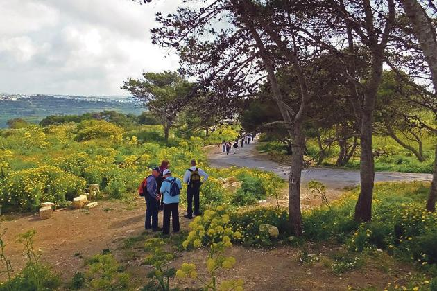 A ramble through Malta's ridges and valleys