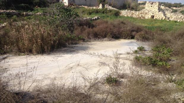One of the fields flooded with cement wash. In certain parts, there was so much cement that the field turned solid.