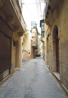 The Planning Authority has stopped works on a building on Triq il-Karità in Victoria.
