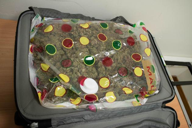 Cannabis-stuffed suitcase lands passenger behind bars