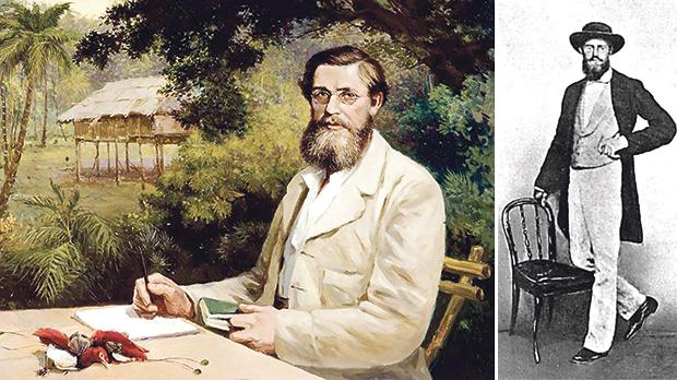 Portrait of Wallace in the Malay Archipelago with two specimens of the Red Bird of Paradise. Right: Alfred Russel Wallace photographed in February 1862 in Singapore, a few days before setting out on the voyage which was to bring him to Malta.