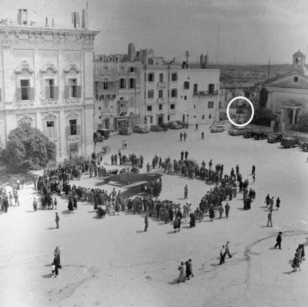 The tree was spotted in this wartime photo by restoration architect Edward Said. Photo: Facebook/Edward Said