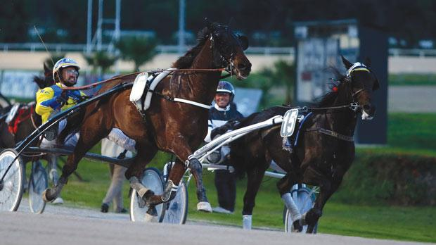 Ohime Mag (left) winning the normal Premier Class race.