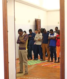 Muslim migrants pray at an immigration centre in Caltagirone, Sicily. Photos: Reuters