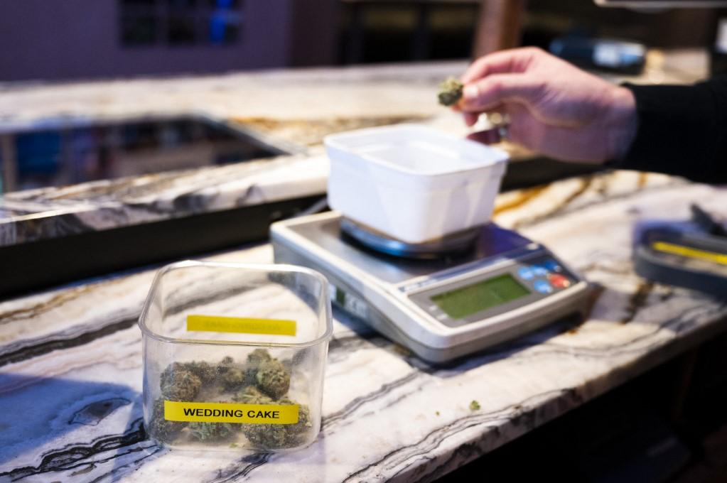 A shop assistant in the Netherlands weighs cannabis for sale. Photo: AFP