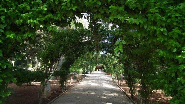 San Anton Gardens. Photo: Charles Camilleri