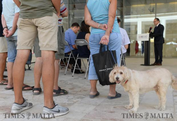 A dog glances towards the camera as PN's Chris Said holds a press conference outside the Parliament buildings in Valletta on September 4. Photo: Matthew Mirabelli