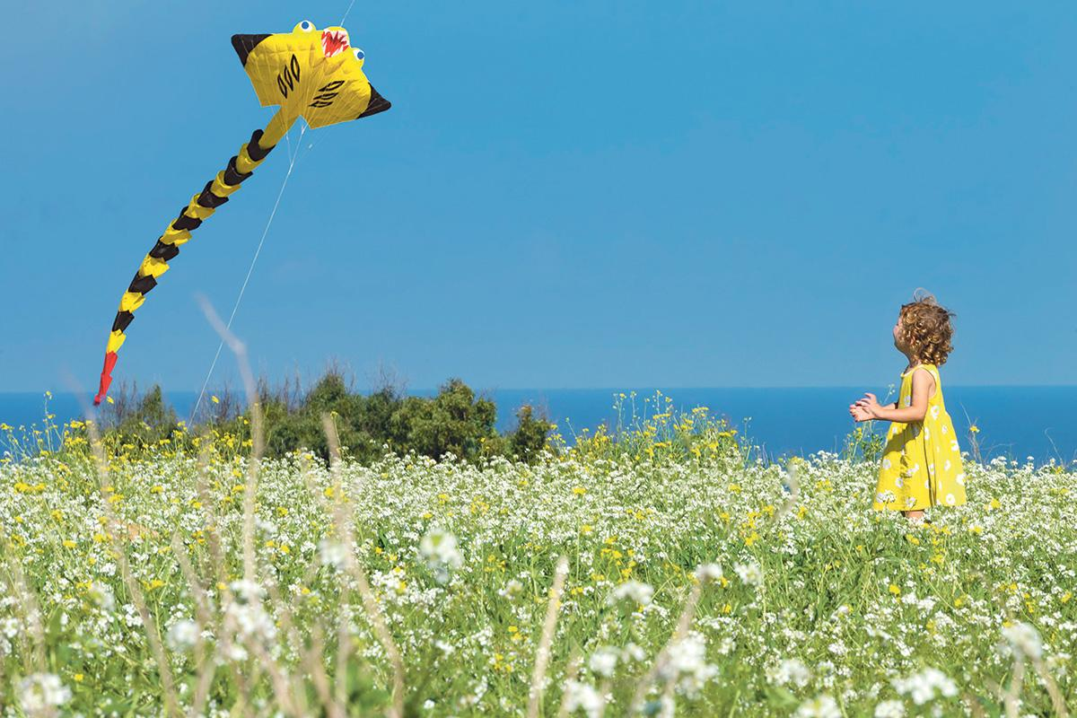 A whimsical yellow kite captures the attention of a little girl.