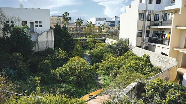 Developers want to build 20 units and underlying garages in a part of the garden. Photo: Jonathan Borg