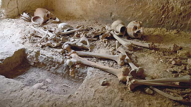 Some of the human remains unearthed beneath the St Paul's Missionary College in Rabat, which have since been moved. The newly discovered tombs are open to the public today.