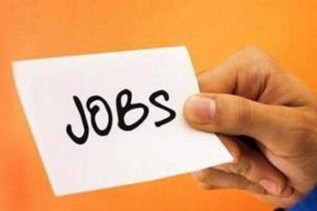 Employment up 5.4% in last quarter of 2019