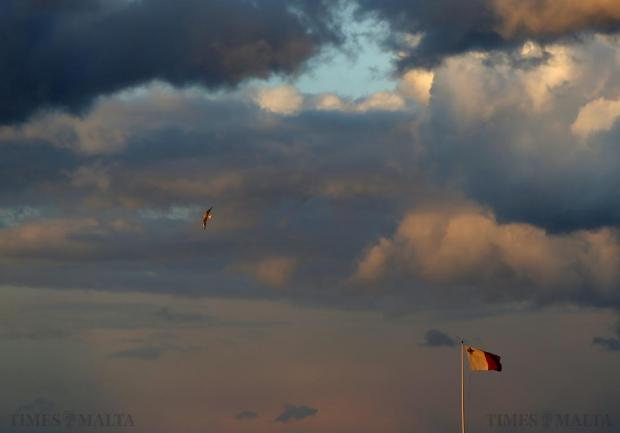 A seagull flies near a Maltese flag at sunset in Valletta on January 28. Photo: Darrin Zammit Lupi