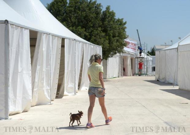 A woman and her pet Chihuahua walk around the grounds of Montekristo Estates as preparations get underway for the 'Il Fiera L-Kbira' on July 5. Photo: Matthew Mirabelli