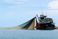 More in depth data required to reveal true global footprint of fishing
