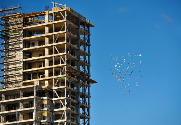 Pigeons fly around A high-rise building in Gzira on January 31. Photo: Chris Sant Fournier
