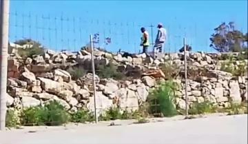 Watch: Workers seen dismantling structure on site of possible medieval church