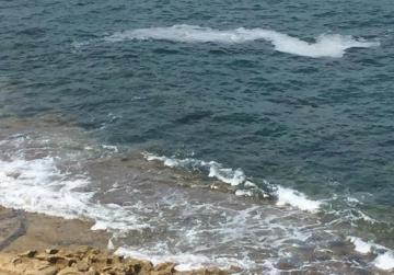 Sea slime spreads to Sliema, Ġnejna...