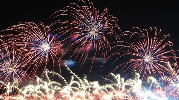 Be Mindful Of Animals Spca Urges Fireworks Enthusiasts