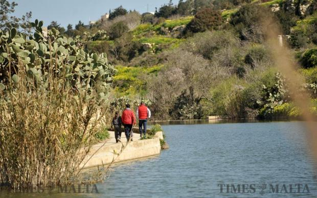 Some people took leave from work to enjoy a mid week walk at Chadwick Lakes on February 15. Photo: Chris Sant Fournier