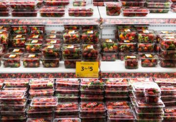 Reward offered as strawberries in Australia sabotaged with needles, pins