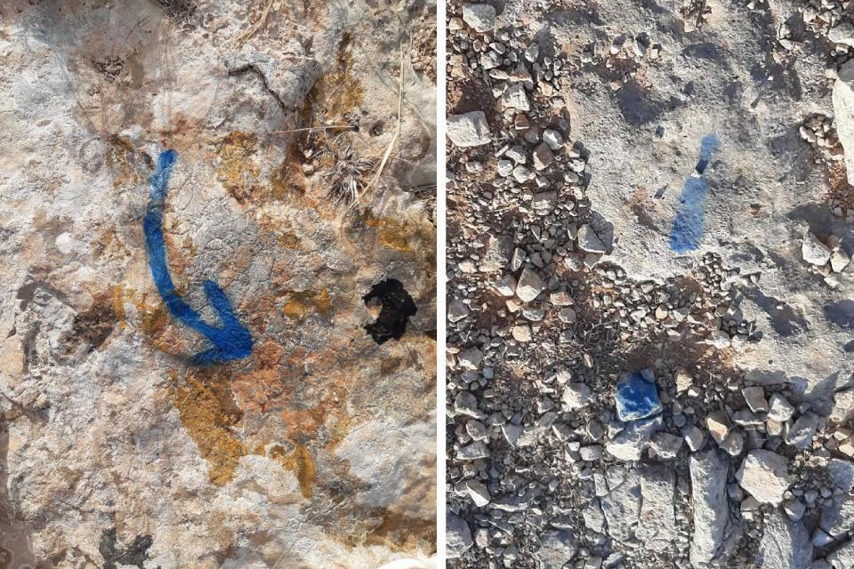 Markings at Pembroke. Photo: Nature Trust Malta