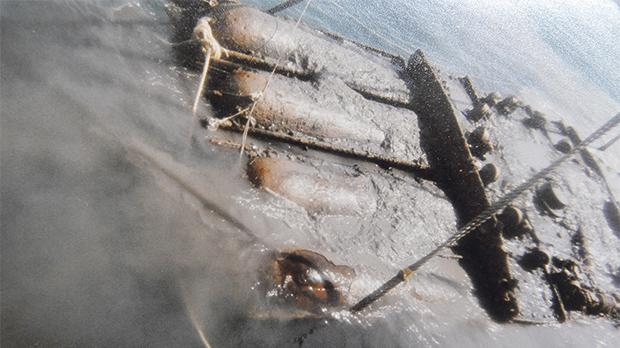 Torpedoes recovered from the HMS Maori wreck at Boiler Wharf, Senglea.