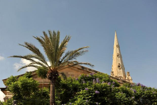 The spire and roof of the Anglican Cathedral in Valletta pop out from over the trees on September 5. Photo: Chris Sant Fournier